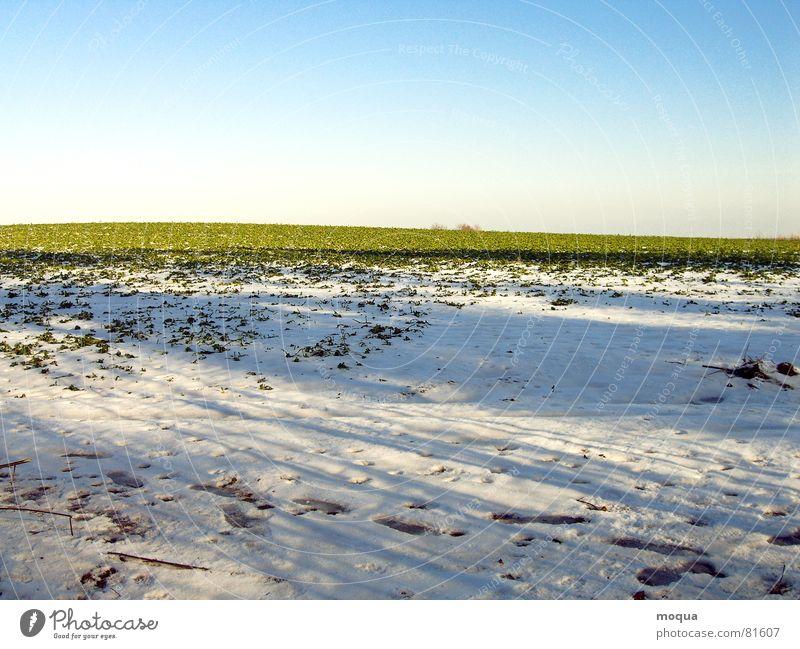Beautiful Sky White Sun Green Blue Winter Cold Snow Spring Ice Field Horizon Tracks Hill Friendliness