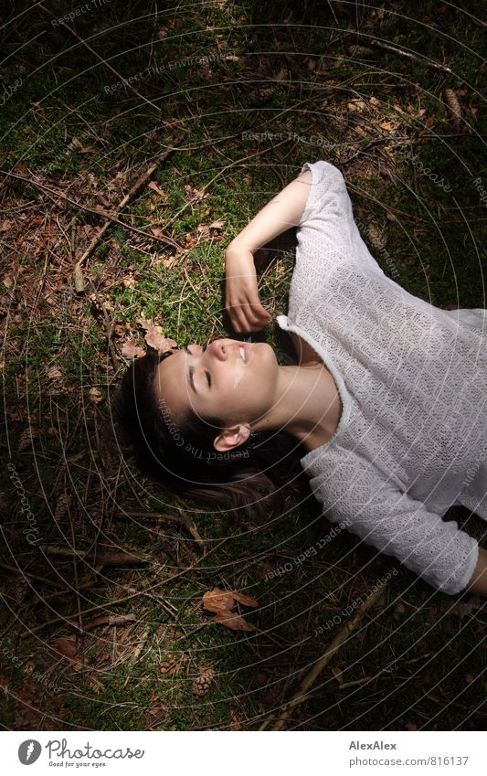 Nature Youth (Young adults) Beautiful Relaxation Young woman 18 - 30 years Forest Adults Feminine Dream Lie Authentic Esthetic Trip Branch Sleep