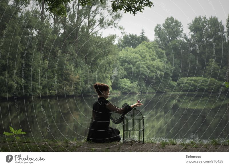 . Freedom Human being Feminine Woman Adults 1 Environment Nature Water Park Pond Lake Bird Bird's cage Trust Love of animals Idyll Colour photo Exterior shot