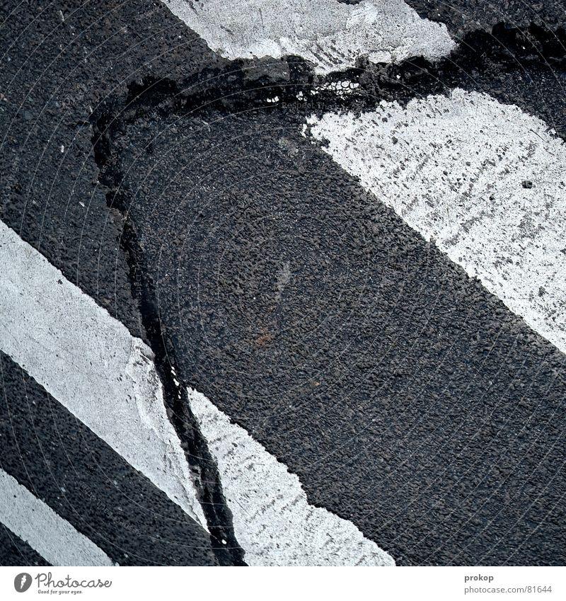 Friend in need Resurrect Asphalt Traffic lane Tar Broken Stripe Zebra crossing Gray Black Rasping Rough Lane markings Fraud Repaired Geometry Raw Construction