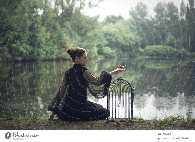 let go Freedom Human being Feminine Woman Adults 1 Spring Lakeside River bank Pond Bird's cage Goodbye Colour photo Full-length