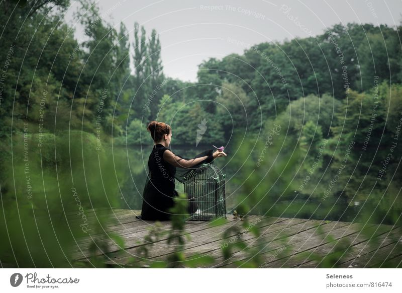 Human being Woman Nature Plant Tree Landscape Far-off places Environment Adults Feminine Freedom Lake Bird Park Bushes Trip