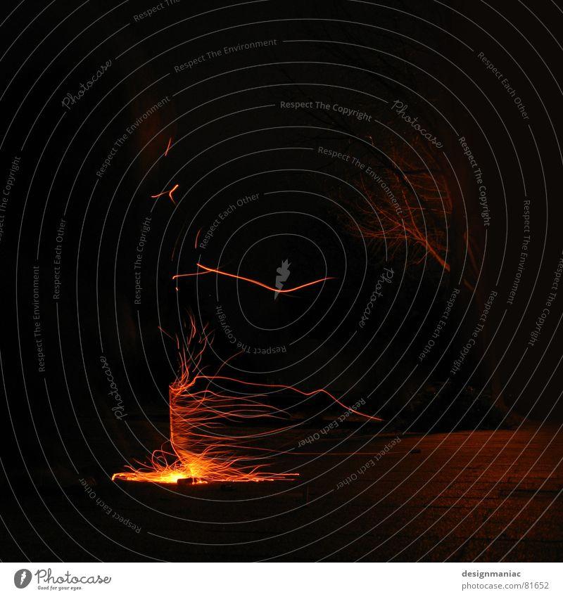 Nature Old Tree Red Black Loneliness Lamp Dark Cold Warmth Orange Glittering Germany Wind Blaze