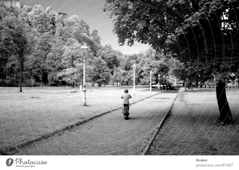 Day as dream Passenger train Park Summer Countries Peace infrared path suburban way infrared light dreaming pleasure ground outdoor sports Black & white photo