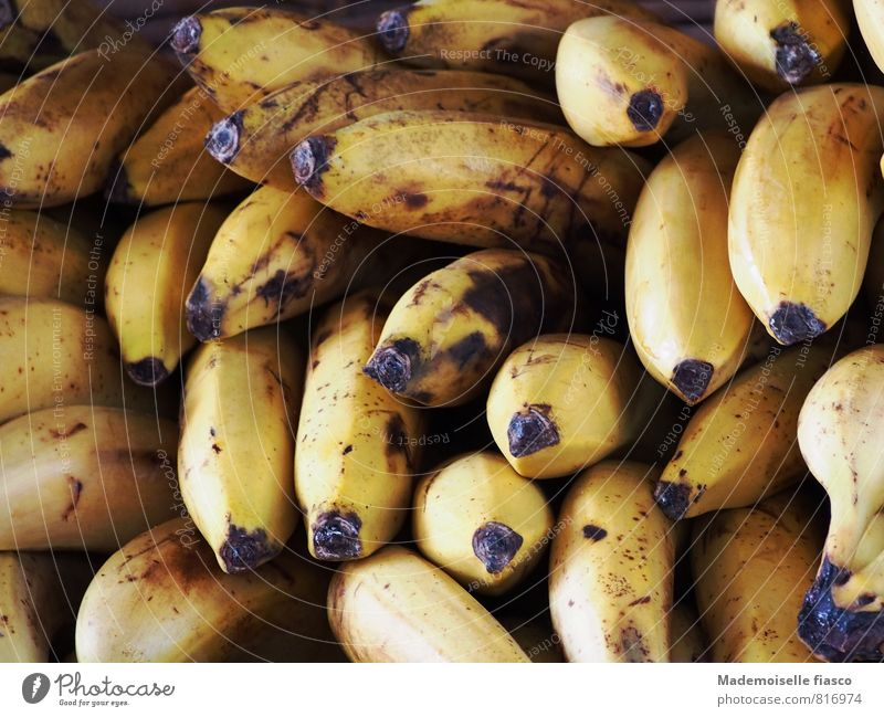 bananas Fruit Nutrition Organic produce Vegetarian diet Yellow Black Banana Colour photo Close-up Deserted