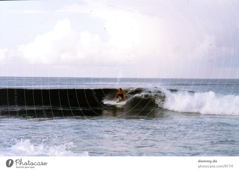 surfer Waves Water Breathe Flying Surfer Sri Lanka Colour photo