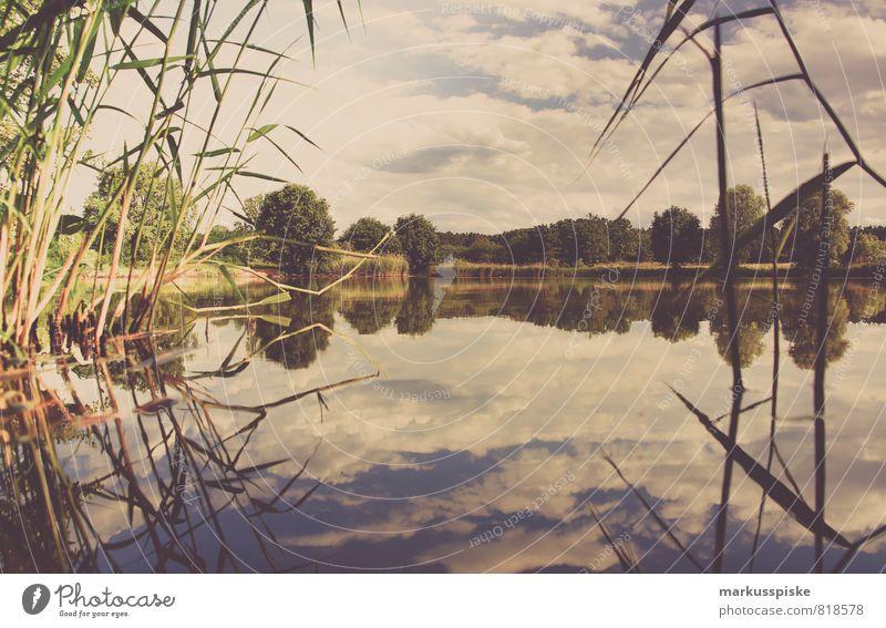 Nature Vacation & Travel Summer Landscape Joy Environment Meadow Swimming & Bathing Freedom Lake Leisure and hobbies Field Adventure Lakeside Fish Sunbathing