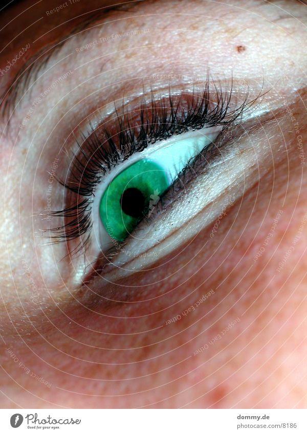 greenEye Feminine Green Contact lense Eyelash Macro (Extreme close-up) Close-up Eyes hatu