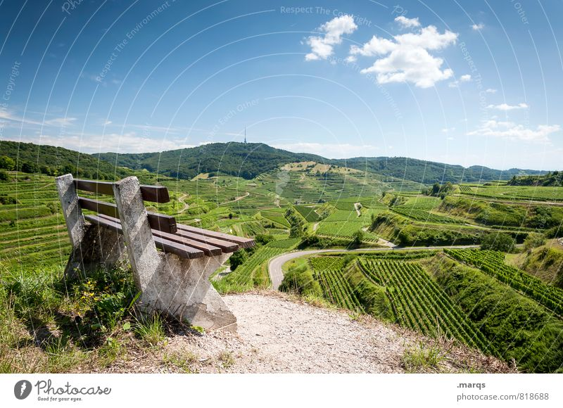 emperor's weather Tourism Trip Hiking Nature Landscape Sky Horizon Summer Autumn Beautiful weather Hill Field Vineyard Wine growing Bench Sign Moody Relaxation