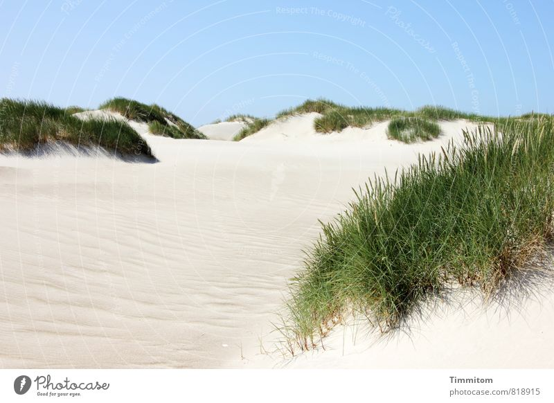 Sky Nature Vacation & Travel Blue Plant Green Summer Calm Landscape Environment Emotions Natural Gray Happy Sand Bright