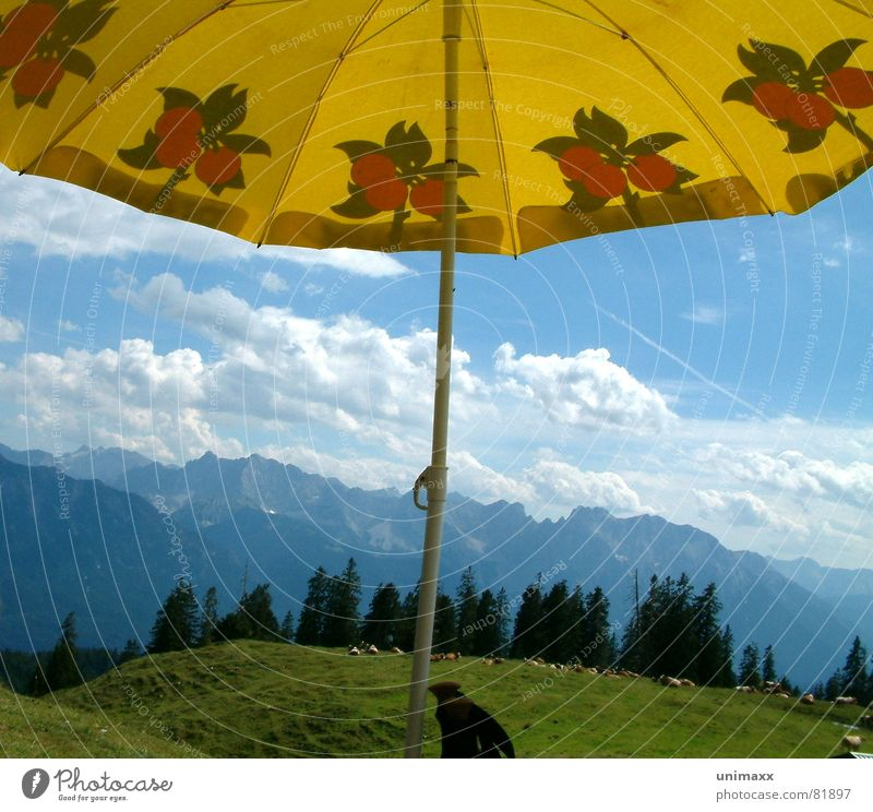 Sky Blue Green Tree Clouds Forest Yellow Meadow Mountain Grass Hiking Level Alps Climbing Umbrella Pasture