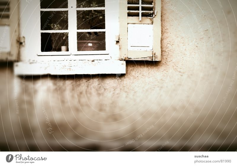 House (Residential Structure) Dark Window Wall (building) Sadness Building Facade Gloomy Derelict Window pane Flowerpot Shutter Vista Villa Window board