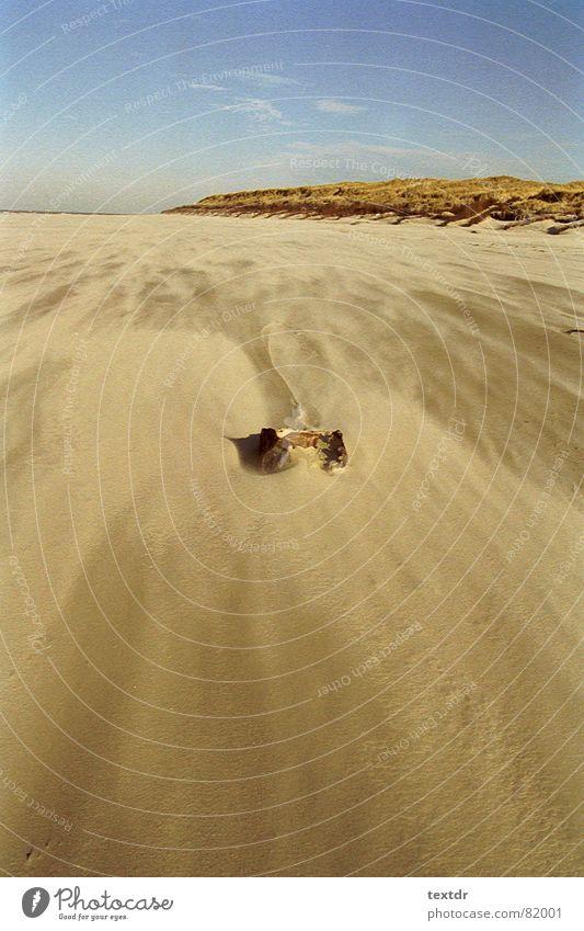 Sky Ocean Blue Beach Sand Coast Wind Gale Beach dune Beige Flotsam and jetsam Sanddrift