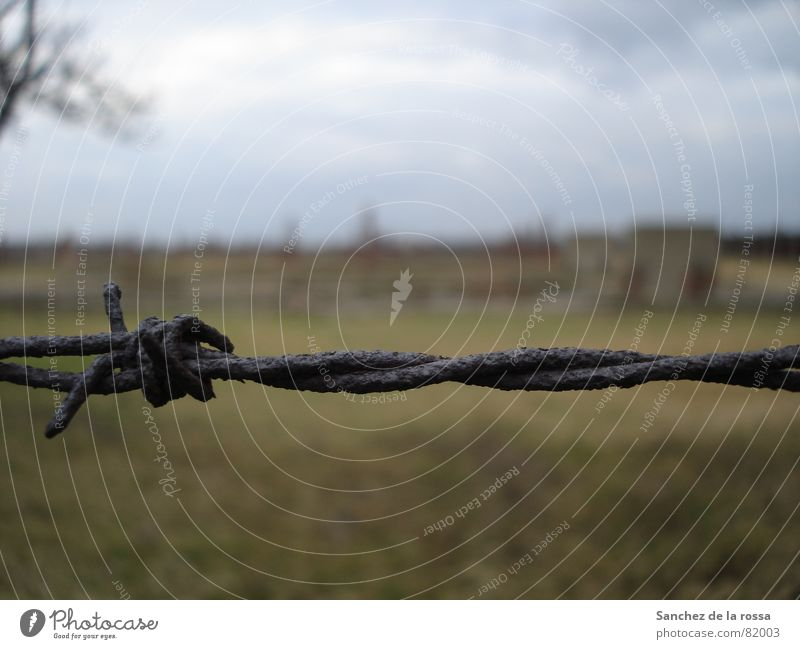 Auschwitz/Birkenau II Fascist Barbed wire Derelict Concentration camp Auschwitz-Birkenau National socialist Grating Landmark Monument Rust Poland wire entangled