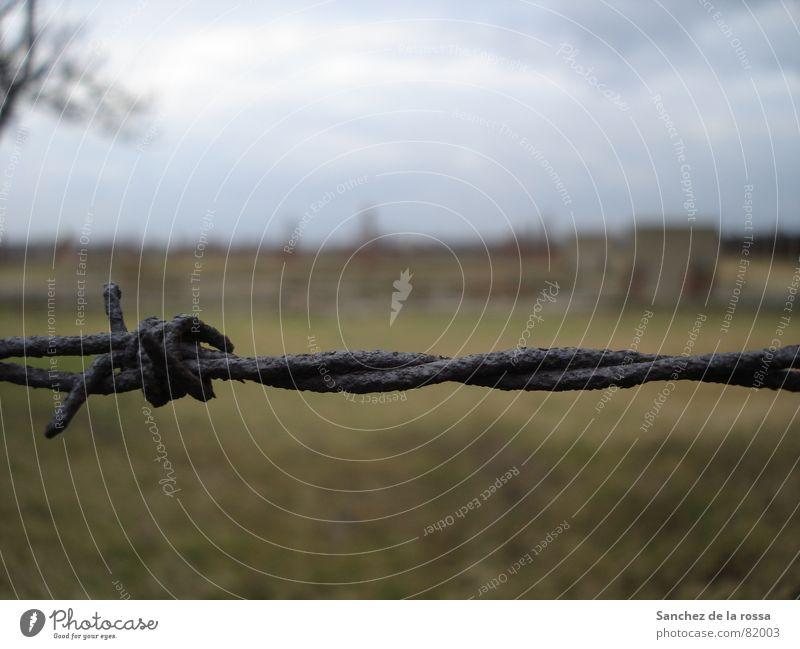 Derelict Monument Rust Landmark Grating Poland Barbed wire Fascist Concentration camp Auschwitz-Birkenau National socialist
