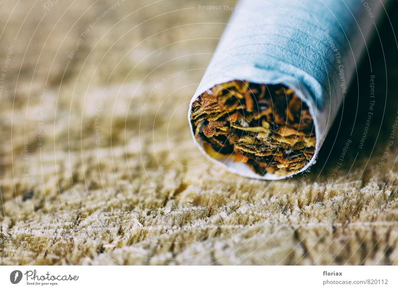 seduction. Healthy Illness Smoking Intoxicant Relaxation Paper Wood Smoke Rotate Lie Wild Brown Vice Willpower Judicious Disciplined Nerviness Drug addiction
