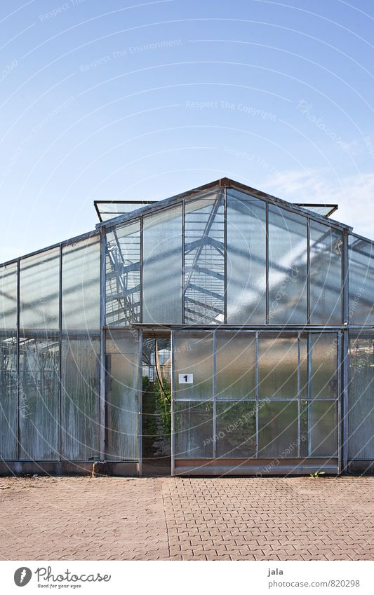 greenhouse Work and employment Gardening Workplace Agriculture Forestry Sky Manmade structures Building Greenhouse Window Door Esthetic Large Colour photo