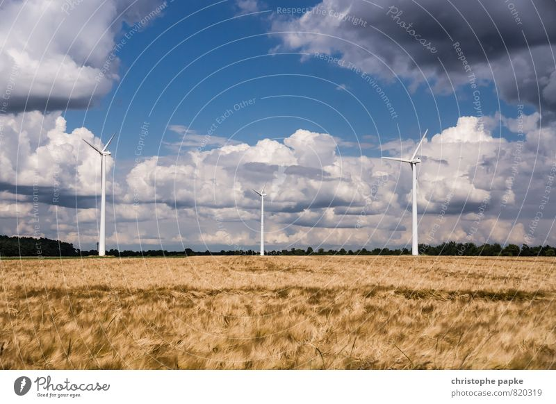 Nature Summer Landscape Clouds Far-off places Environment Autumn Energy industry Field Wind Energy Large Climate Tall Beautiful weather Infinity