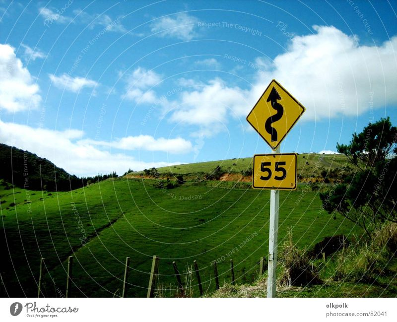 road trip Curve Green Speed Clouds Grass Hill Yellow Fence Sheep New Zealand Meadow Speed limit Country road Street Landscape Sky Blue Sun Signs and labeling