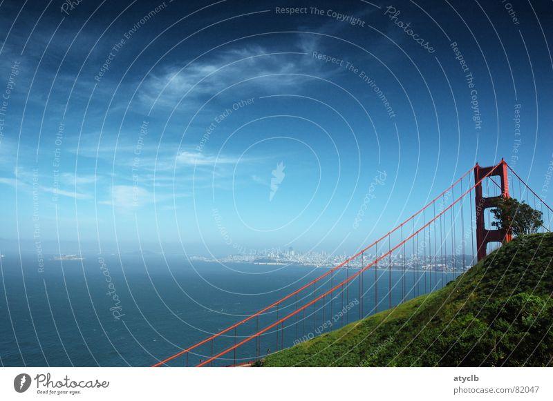 Sky Tree Red Clouds Bridge USA California San Francisco Golden Gate Bridge