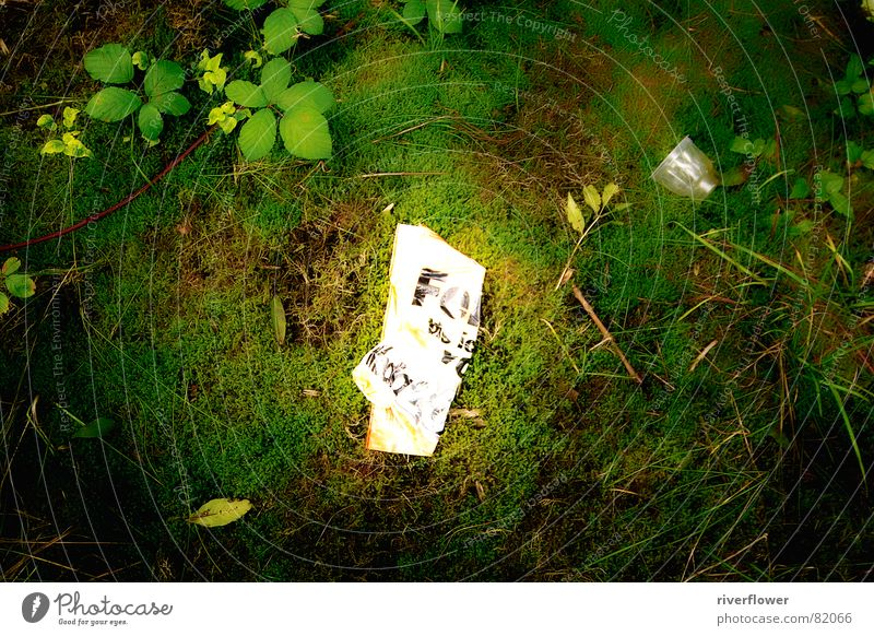 urban nature Park Meadow Trash Green Paper Environment Middle Nature Colour Statue grass Old town