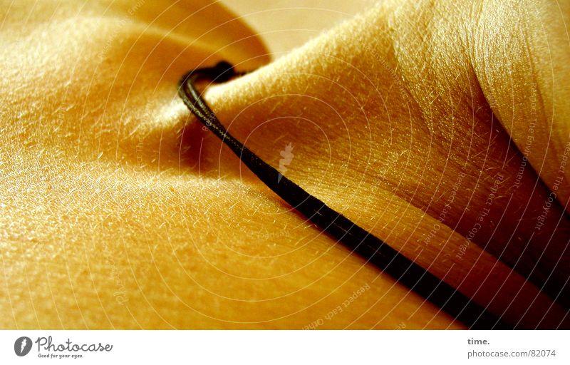 Nature Relaxation Contentment Skin Sleep Pelt Fatigue Neck Leather Feeble Skeleton Bedroom Lifeless Dull Rest Doze