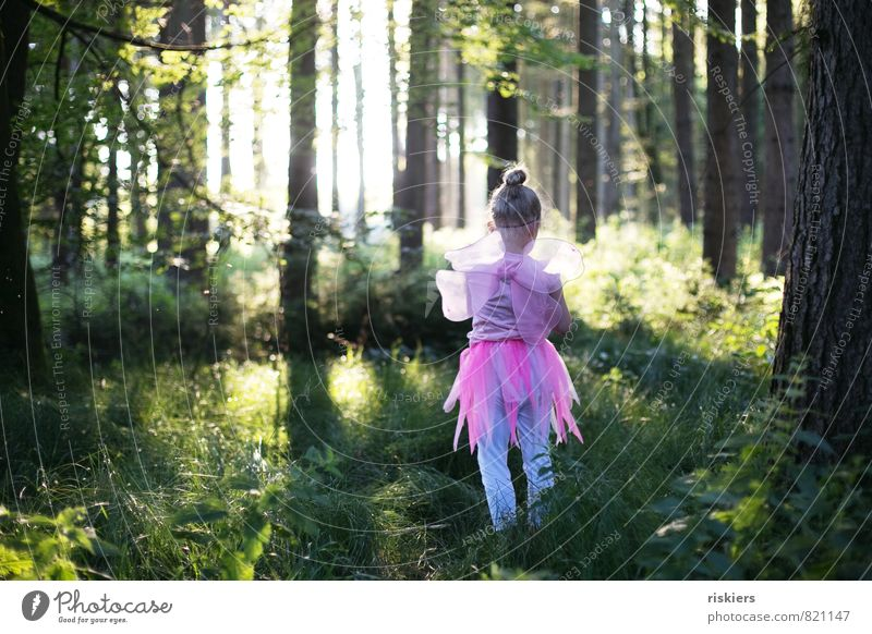 spring fairy Human being Feminine Child Girl Infancy 1 3 - 8 years Environment Nature Sunlight Spring Summer Beautiful weather Forest Discover Illuminate