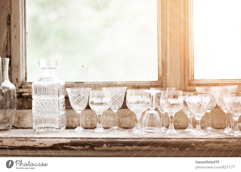 prost Beverage Alcoholic drinks Spirits Crockery Glass Champagne glass Lifestyle Luxury Joy Happy Wellness Contentment Relaxation Calm Summer Living or residing