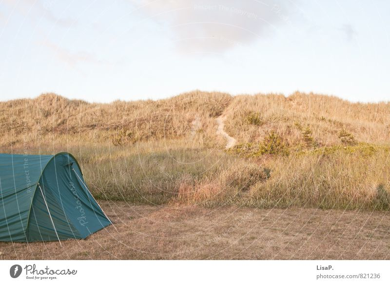 dune camping Relaxation Calm Vacation & Travel Camping Summer Summer vacation Beach Ocean Dune Marram grass Nature Hill Coast Baltic Sea Sand Tent Moody