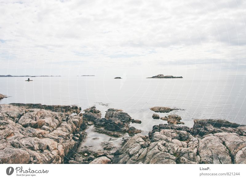 Rocky Nature Sky Clouds Coast Bay Fjord North Sea Ocean Granite Norway Vacation in Norway Free Blue Gray Calm Wanderlust Loneliness Adventure Vacation & Travel