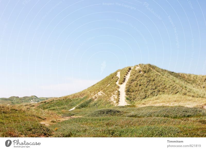 far. Vacation & Travel Environment Nature Landscape Plant Sky Summer Beautiful weather Dune Denmark Lanes & trails Sand Esthetic Natural Blue Green Emotions