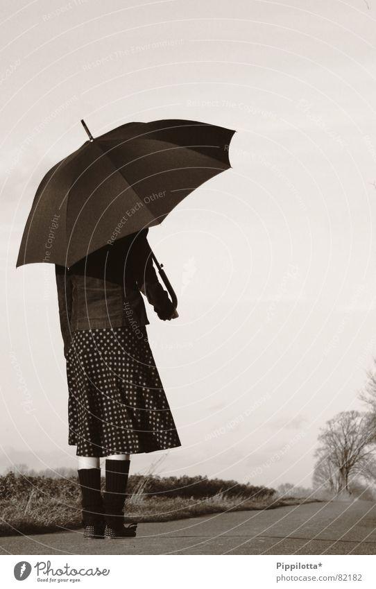 small fine lady Far-off places Umbrella Woman Fine Small Autumn Loneliness Weather Rain Street Lady