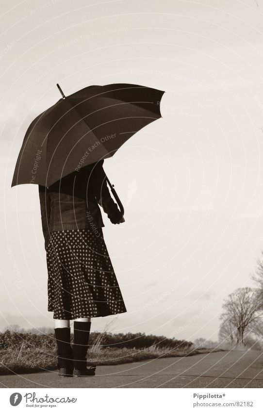 Woman Loneliness Far-off places Street Autumn Rain Small Weather Umbrella Lady Fine