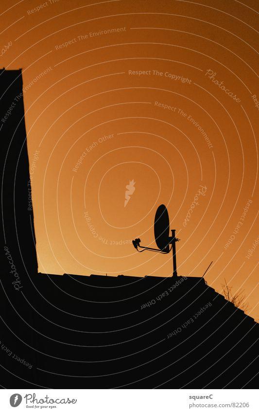 Electromagnetic wave bundling and conversion Satellite dish Roof Television Media Transmit Information Exterior shot Broacaster TV station