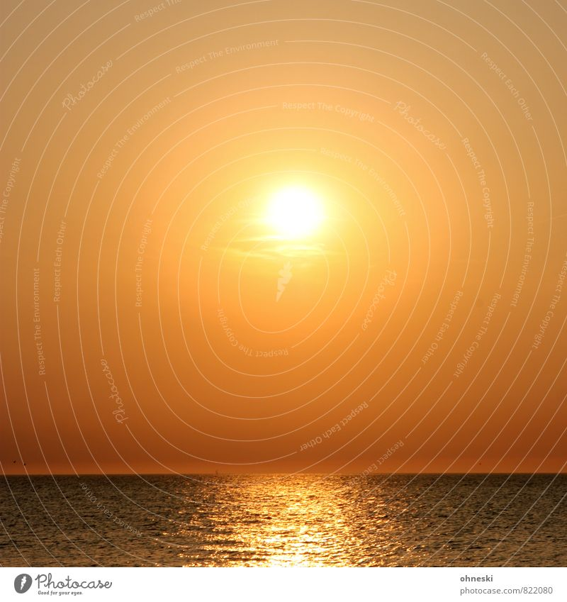 Beautiful weather Elements Air Water Cloudless sky Horizon Sun Sunrise Sunset Sunlight Summer North Sea Ocean Joie de vivre (Vitality) Warm-heartedness Romance