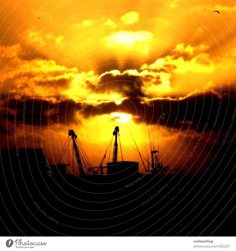 trawlers Trawler Antenna Radar station Sunset Yellow Black Sunbeam Beach Coast Celestial bodies and the universe Beautiful fish steamer aerial sunrays harbour