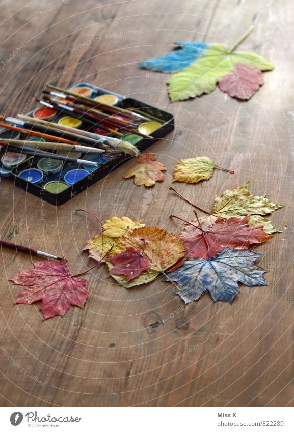 depict sb./sth. Leisure and hobbies Playing Handicraft Children's game Autumn Leaf Wood Multicoloured Creativity Autumn leaves Painting (action, artwork)