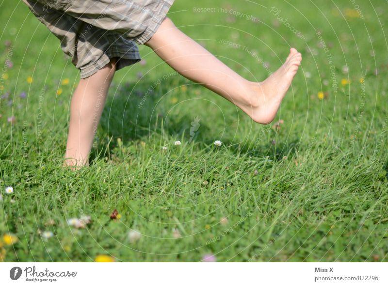 Human being Child Summer Meadow Sports Playing Healthy Garden Legs Feet Infancy Walking Fresh Toddler Barefoot Tread