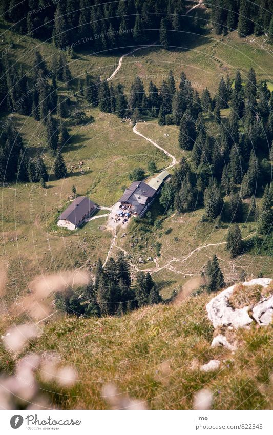 Nature Summer House (Residential Structure) Forest Environment Mountain Meadow Lanes & trails Rock Hiking Trip Beautiful weather Adventure Hill Alps Climbing