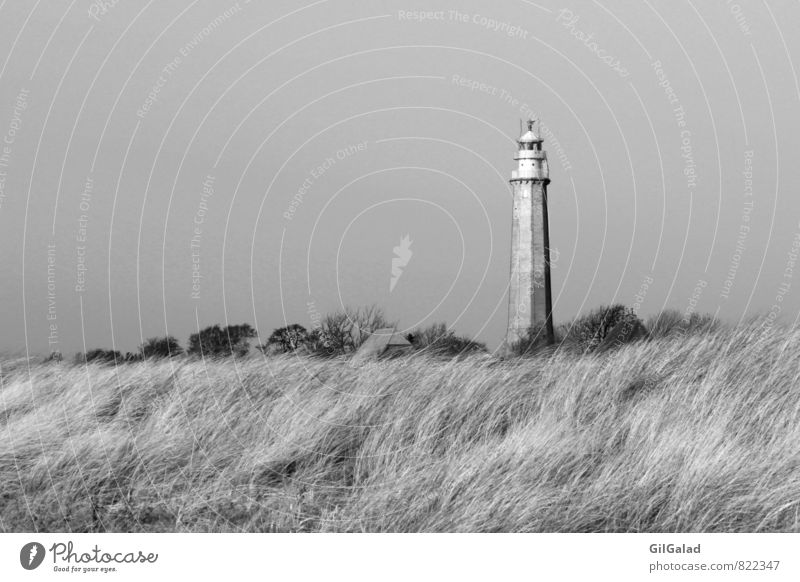 Lighthouse in nowhere Environment Nature Landscape Autumn Winter Bushes Coast Beach Baltic Sea Island Fehmarn fledged Deserted Logistics Navigation Stone Going