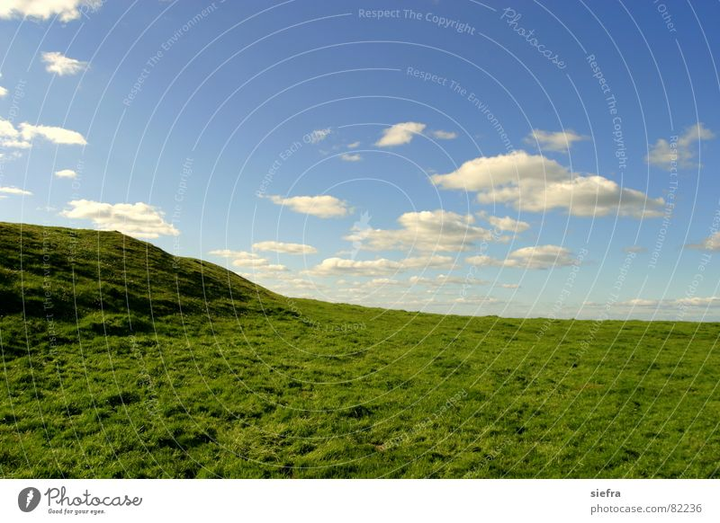 Sky Green Blue Clouds Meadow Grass Freedom Happy