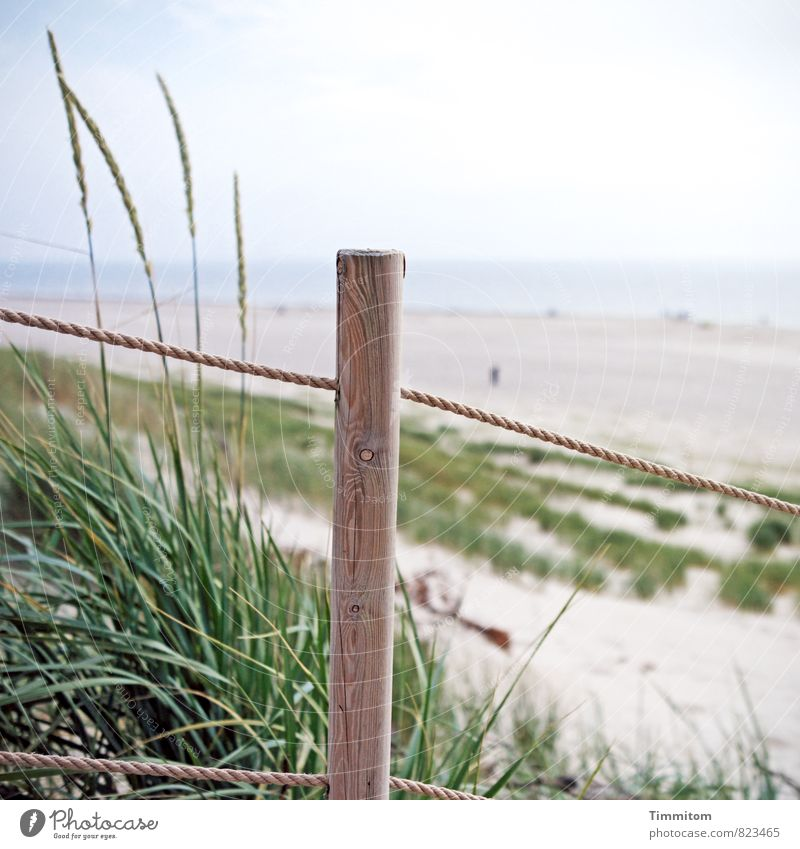 Watermark | Orientation aid. Vacation & Travel Environment Nature Landscape Plant Elements Sand Sky Beautiful weather Beach Denmark Pole Rope Wood Friendliness