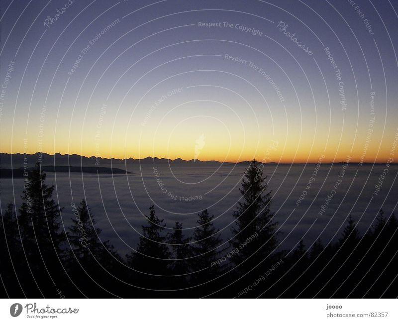 Sun Ocean Mountain Fog Alps Blanket Dusk Mountain range Celestial bodies and the universe Shift work Shroud of fog