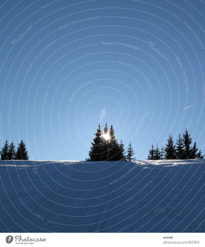 Sky Blue Tree Sun Winter Calm Cold Snow Horizon Ice Feasts & Celebrations Stars Airplane Fresh Idyll Christmas tree