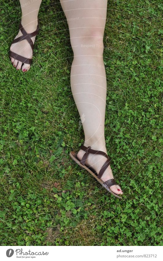 The Roman Lifestyle Elegant Human being Feminine Legs Feet 1 18 - 30 years Youth (Young adults) Adults Lie Sleep Calm Relaxation green meadow Sandal Summer