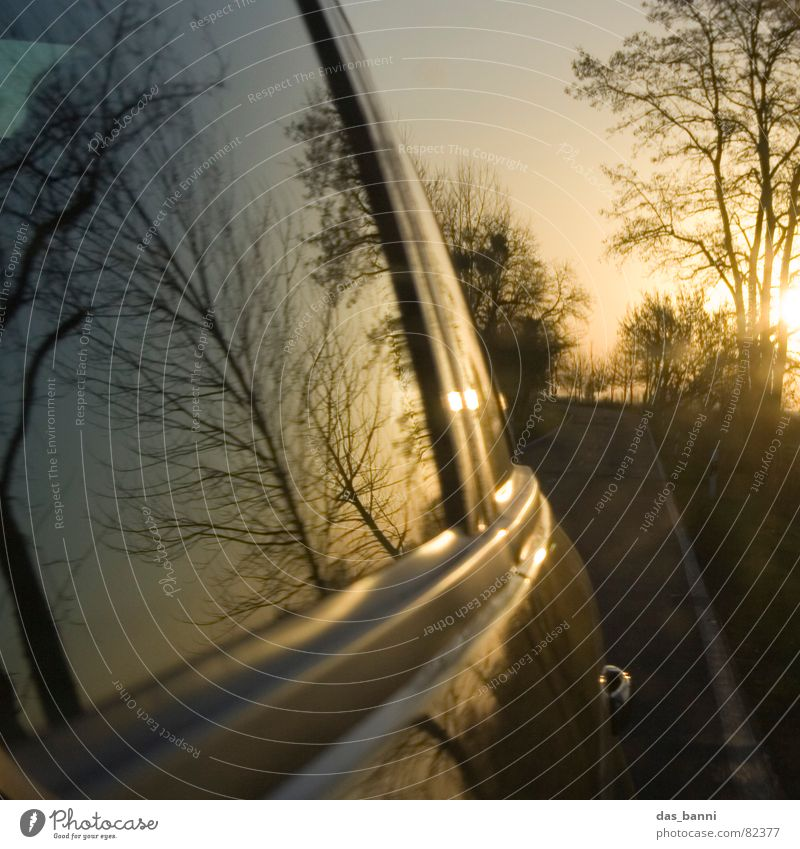 turn around Carriage Freeway Airstream In transit Means of transport Speed Reflection Mirror Sunset Physics Autumn Cold Tree Window Window pane Asphalt Past