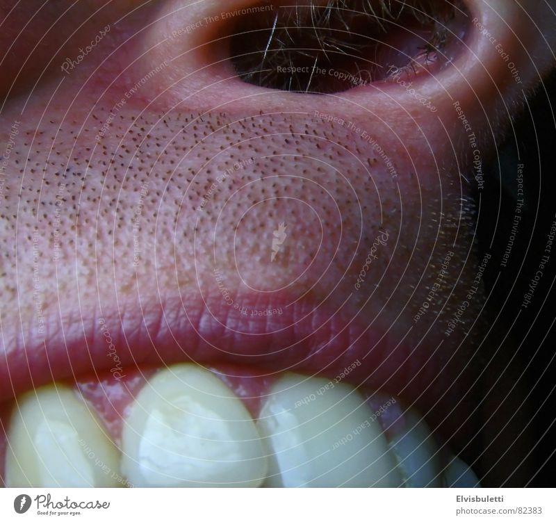 Teeth Lips Facial hair Dentist Nostril Nostrils Dental care Gum Nasal hair