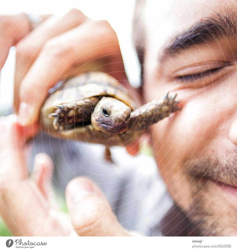 stroke Masculine Young man Youth (Young adults) Face 1 Human being 18 - 30 years Adults Animal Pet Baby animal Exceptional Point Turtle Colour photo