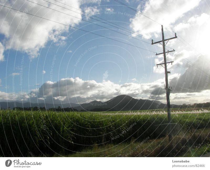 cane sugar Sugarcane Clouds Queensland Australia Electricity Light Street Landscape road trip