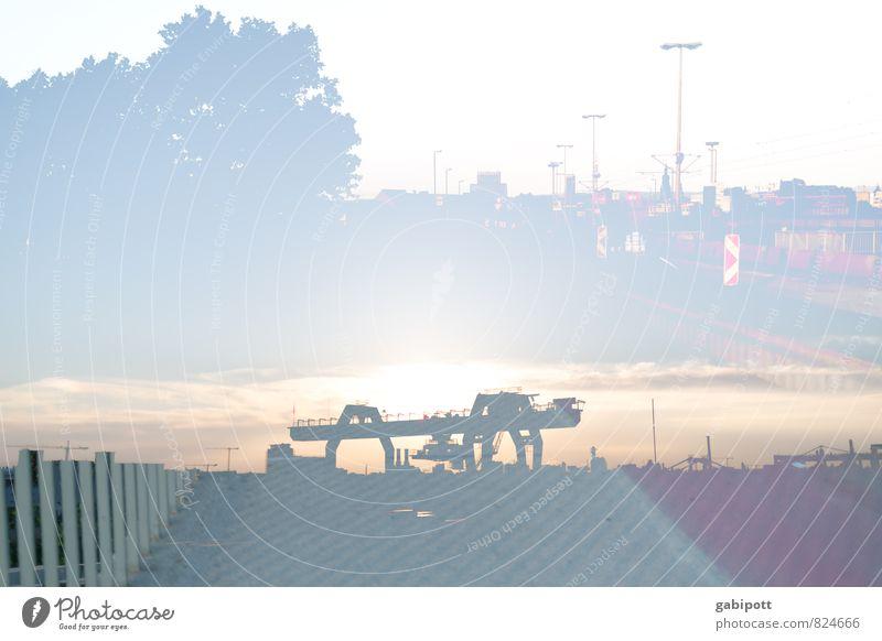 Port of Mannheim and more Port City Skyline Industrial plant Harbour Bridge Dockside crane Town Uniqueness Competition Surrealism Logistics City light Dusk